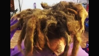 washing my hair for the first time since i was born... (20 years)