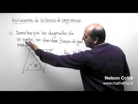Geometría 15