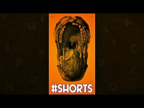 Langue ou langage ? La différence #shorts