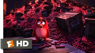 Angry Birds - A Dynamite Defeat Scene (10/10)   Movieclips