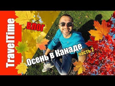 Осень в КАНАДЕ часть 2 🍂 ВЛОГ 🇨🇦 High Park / Хай Парк 🍁 самая красивая осень / VLOG Жизнь в ТОРОНТО