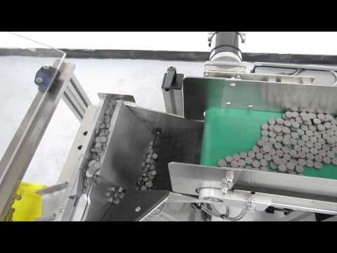 Performance Feeders step feeder orients and feeds automotive magnets