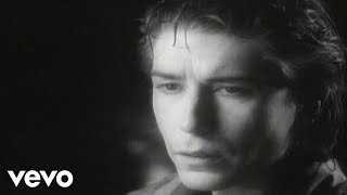 The Psychedelic Furs - The Ghost in You (Official Video)