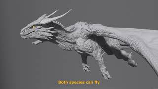 Differences between Wyvern vs Dragon