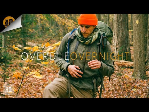 Overdue Overnight: Hammock Camping in an Autumn Forest