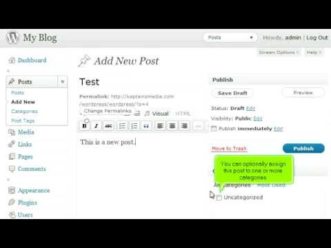 How to write a new post in WordPress