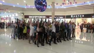 Flashmob Lady Gaga in Saint-Petersburg 8.12.12 (TK Rio)