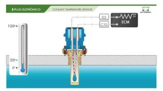 HOW IT WORKS – Temperature Sensor 4051