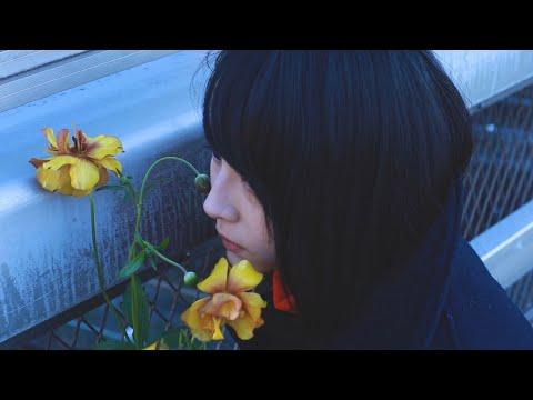 わたしのねがいごと。「オリオン座」Music Video