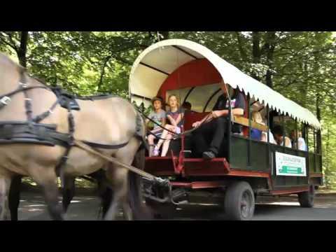 Landal GreenParks | Video Region Drenthe, Niederlande