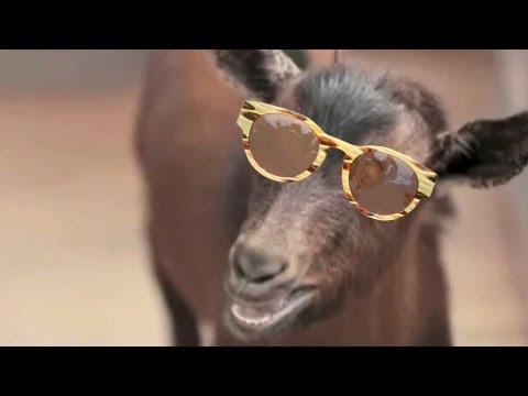 PSY - GENTLEMAN (Goat Remix)