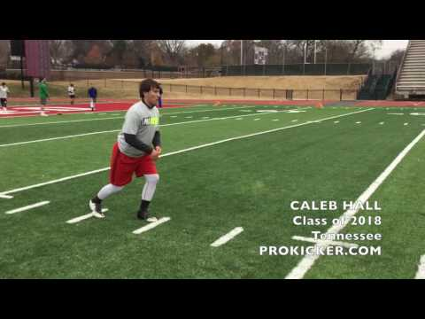 Caleb Hall, Ray Guy Prokicker.com Punter, Class of 2018