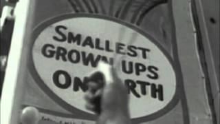 DH Lawrence & The Vaudeville Skiffle Show - 'Vaudeville Show' - DH Lawrence & The Vaudeville Skiffle Show