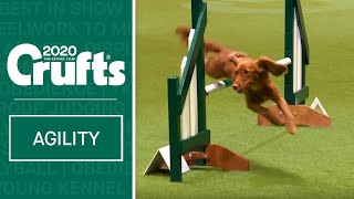 Agility - Championship Final | Crufts 2020