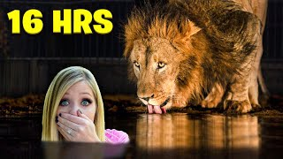 Overnight Survival Challenge in the World's Largest ZOO!