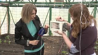 В омском аграрном университете овощи выращивает «умная» теплица