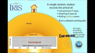 Earthquake Sends Seismic Waves to one station (educational