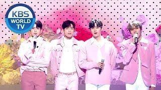 Jinyoung, Minhyuk, JaeHyun, Hwang Minhyun - You are so beautiful[2018 KBS Song Festival /2018.12.28]