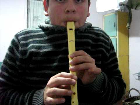 flauta dulce todos juntos (los jaivas)