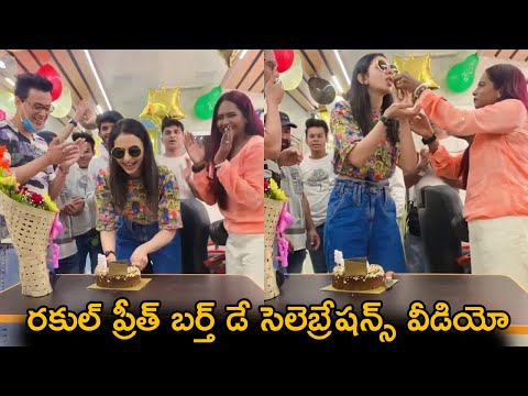 Tollywood actress Rakul Preet Singh's birthday celebrations