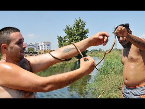 Yer: Antalya... Yılanlarla aynı suda yüzdüler