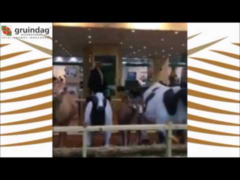 Gruindag presente en Agra Me (Dubái)