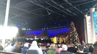 ⚪️Candlelight Processional with Auli'i Cravalho at Epcot!🌸🌺🌏 Part 2