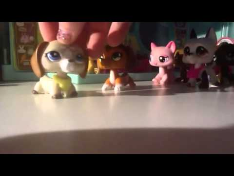 Lps: It's Daisy ( for puppylover863)