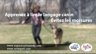 Et si les propriétaires des chiens apprenaient le langage canin?