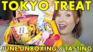 Tokyo Treat June 2016 Unboxing & Tasting - Dried squid, Neko Atsume, flavor changing chips & more!