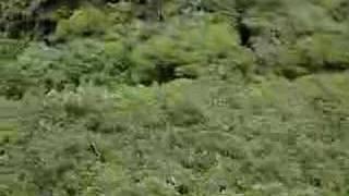 Tirolina de 600 metros de largo