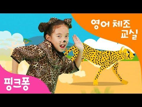 Cheetah Running | 치타치타 뱅뱅 체조 | 영어 체조 교실 | 핑크퐁 체조 | 핑크퐁! 인기동요