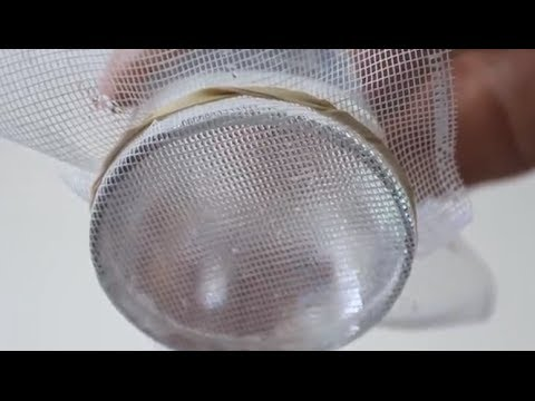 Mysterious Water Suspension - Cool Science Experiment - Smashpipe Tech