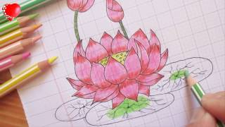 Vẽ hoa sen đơn giản