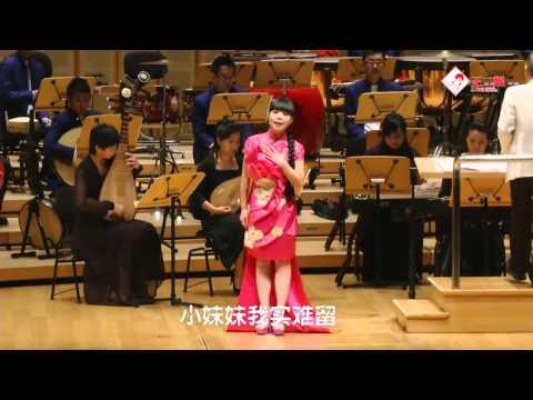 王二妮《新加坡演唱会》精简字幕版