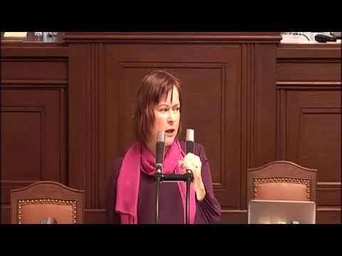 ČR nemá být energetický dinosaurus, říká Pirátka Balcarová