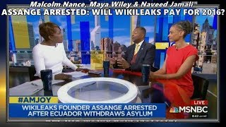 Assange Arrested: What To Do About Wikileaks // Malcolm Nance - AM JOY MSNBC 4/13/19