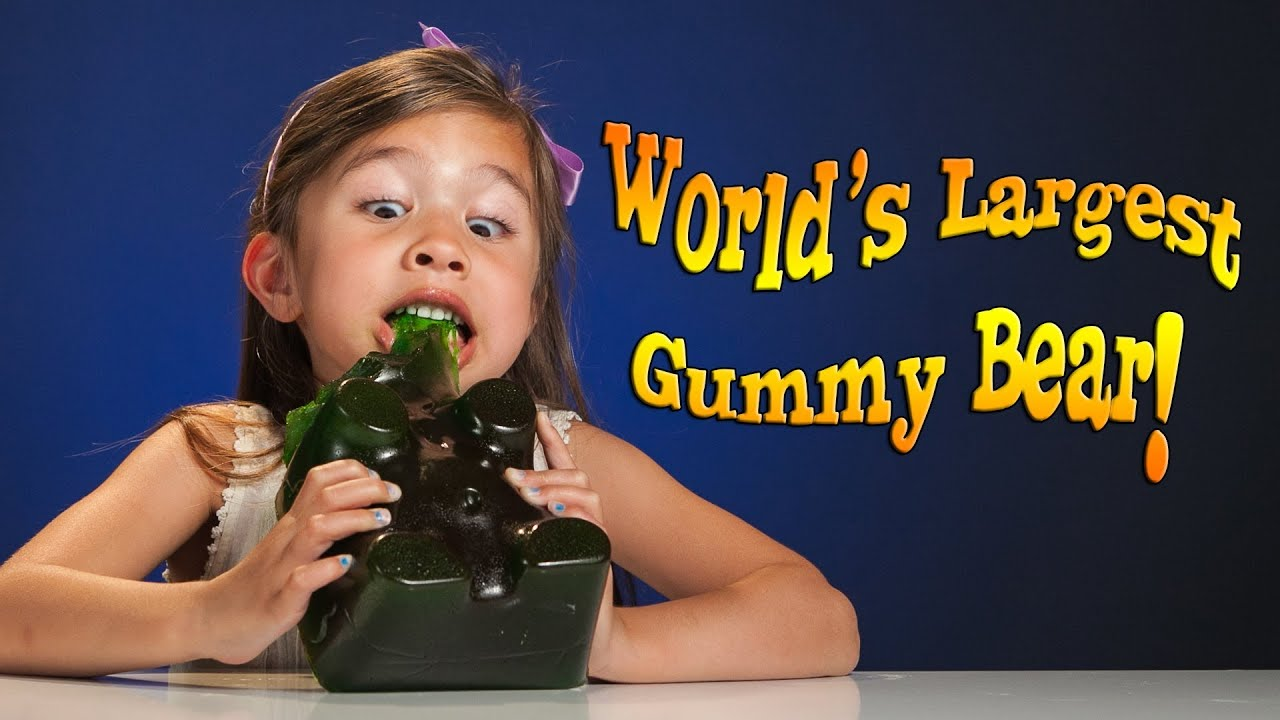 4 Year Old Devours World S Largest Gummy Bear Youtube