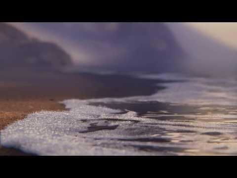 Pixar 'Piper' VFX breakdown -- 11