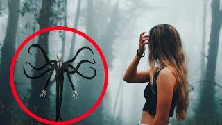 LOST IN SLENDER MAN FOREST