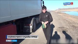 На трассе Челябинск–Новосибирск сотрудники ГИБДД остановили большегрузный автомобиль