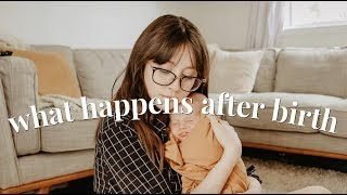 WHAT THEY DON'T TELL YOU ABOUT AFTER BIRTH | NATURAL HOSPITAL BIRTH