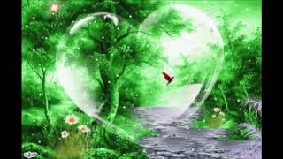 relaxing meditation sounds of wild life water relaxation bird sounds balanced lion 7