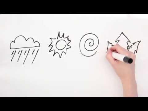 The Story of El Niño