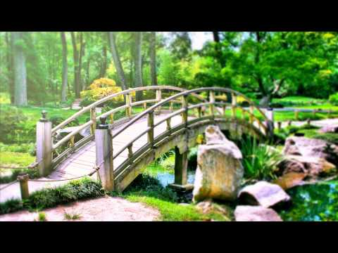 Relaxing Reiki Healing Music. Meditation Calming Music for Balance and Concentration, Relax, Yoga