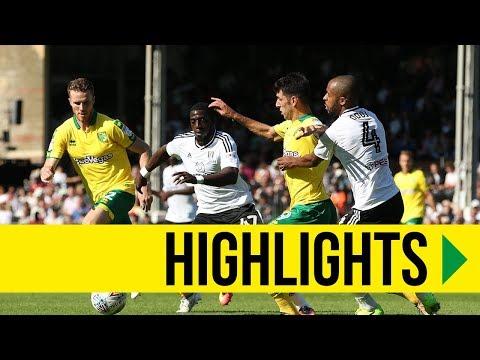 Fulham vs Norwich City