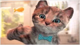 🐱 🎮 Little Kitten My Favorite Cat - Play Fun Cute Kitten Game For Children - Best Kids Learn Game