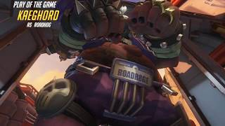 Overwatch - Roadhog POTG