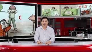 Đáp án À Ra Thế kỳ 8: Tông phải bò, ai bồi thường?