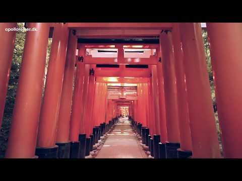 Rejser til Japan - oplev Japans fremmedartede kultur